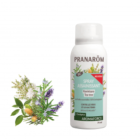 Spray assainissant - 75 ml | Pranarôm